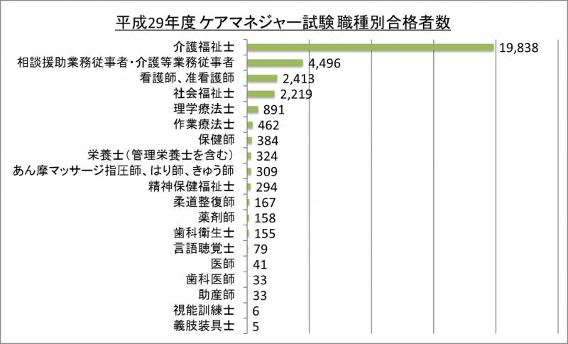 平成29年度ケアマネジャー試験職種別合格者数_29