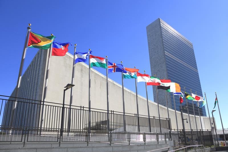 国連職員_画像