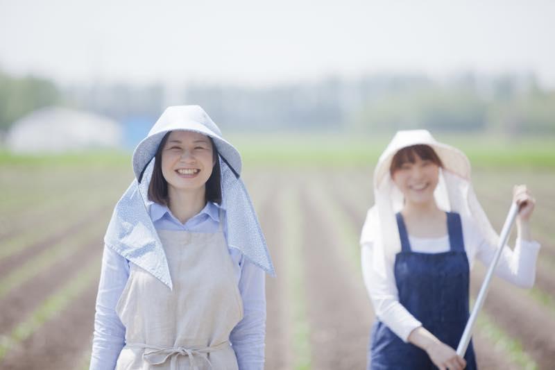 農家_画像