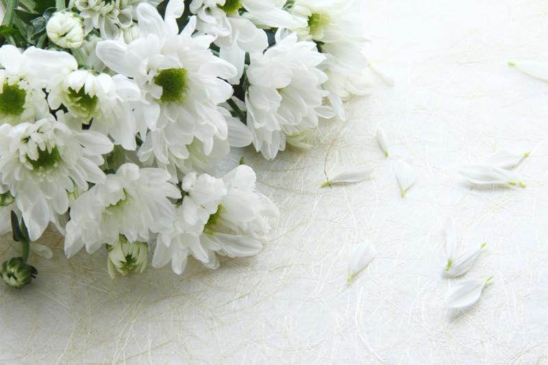 納棺師_画像